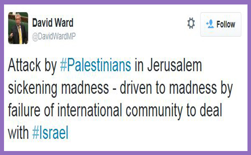 David Ward MP - Jerusalem attack2