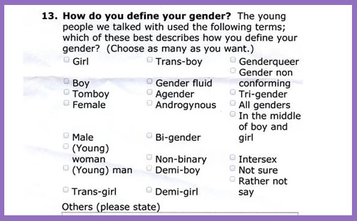 Brighton school gender survey 2