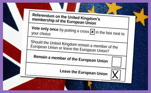 Vote Leave ballot paper 2