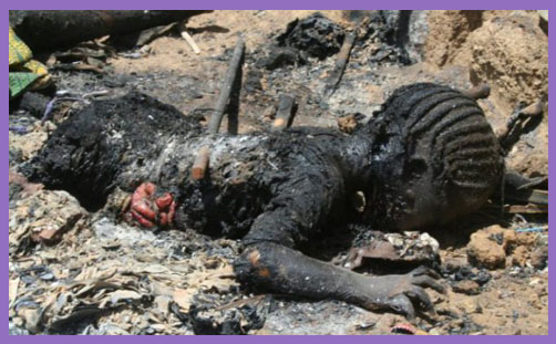 Nigerian Islamists burning 86 children alive met with Obama silence