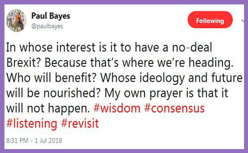 Paul Bayes Twitter Brexit ideology